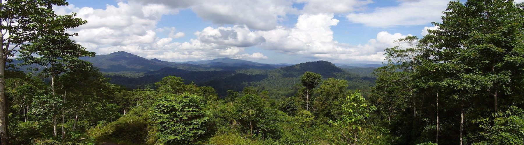 Отдых на Борнео Малайзия
